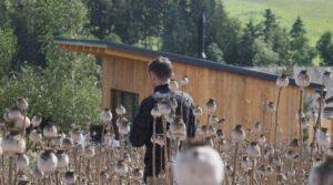 ekologicka dřevostavba